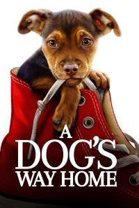 Upcoming Movies 2020, A Dog's Way Home